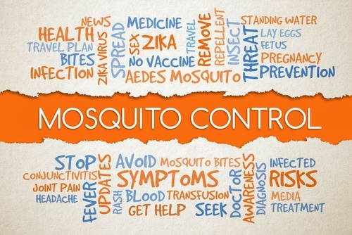 Learn About the Best Mosquito Control Services