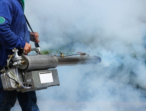 How Does a Mosquito Fogging Machine Help to Control Mosquito Breeding?