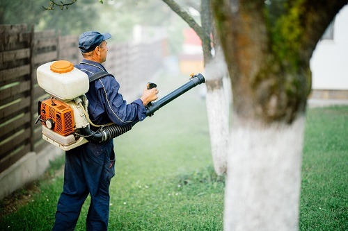 Keep Your Yard Free Of Mosquitos Atlnata